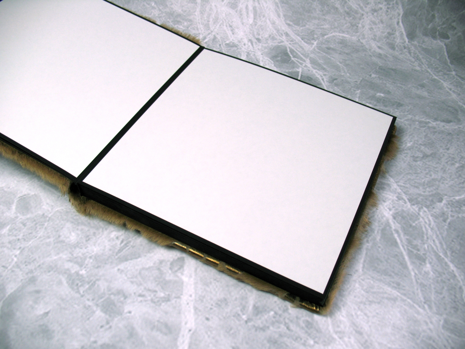 Self-adhesive DIY Photo Album for professional portrait photographers. Elements by Finao.