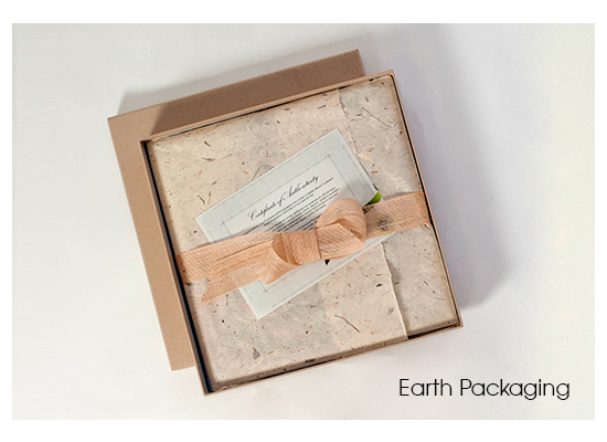 Seldex's new Earth Packaging is now available as a standard option with the Gallery album.